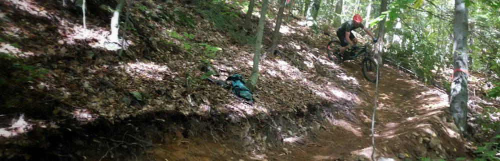 New leaf trails